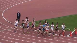 2017東部高校総体 男子800m 決勝