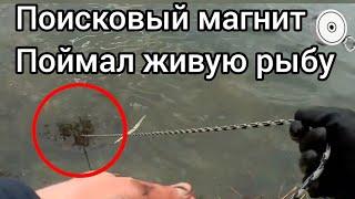 Рыбаки смеялись пока я не достал это Поисковый магнит