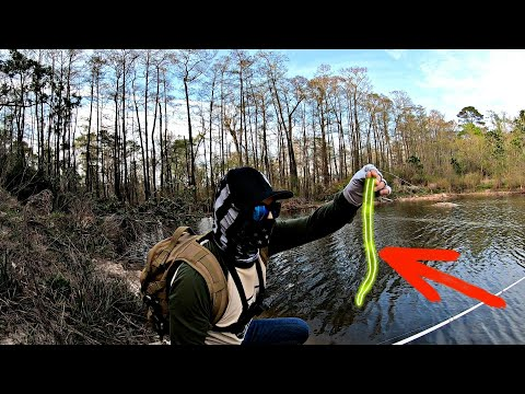 Fishing With FOOT LONG WORM / Paul Elias Favorite Bait Manns Bait