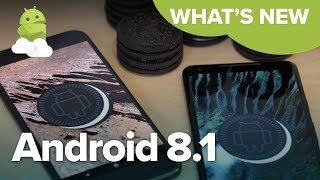 Alex gets to grips with the latest version of Oreo, the just announ...
