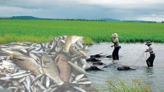 wow Amazing Fishing  - How to Catches Fish - Cambodia Traditional fishing-Fishing Man