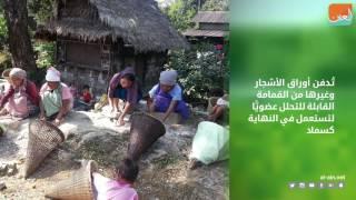 بالفيديو.. 5 معلومات عن القرية الأكثر نظافة في آسيا