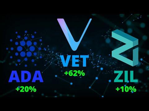 cardano-(ada),-vechain-(vet),-zilliqa-(zil)-+-important-crypto-news!