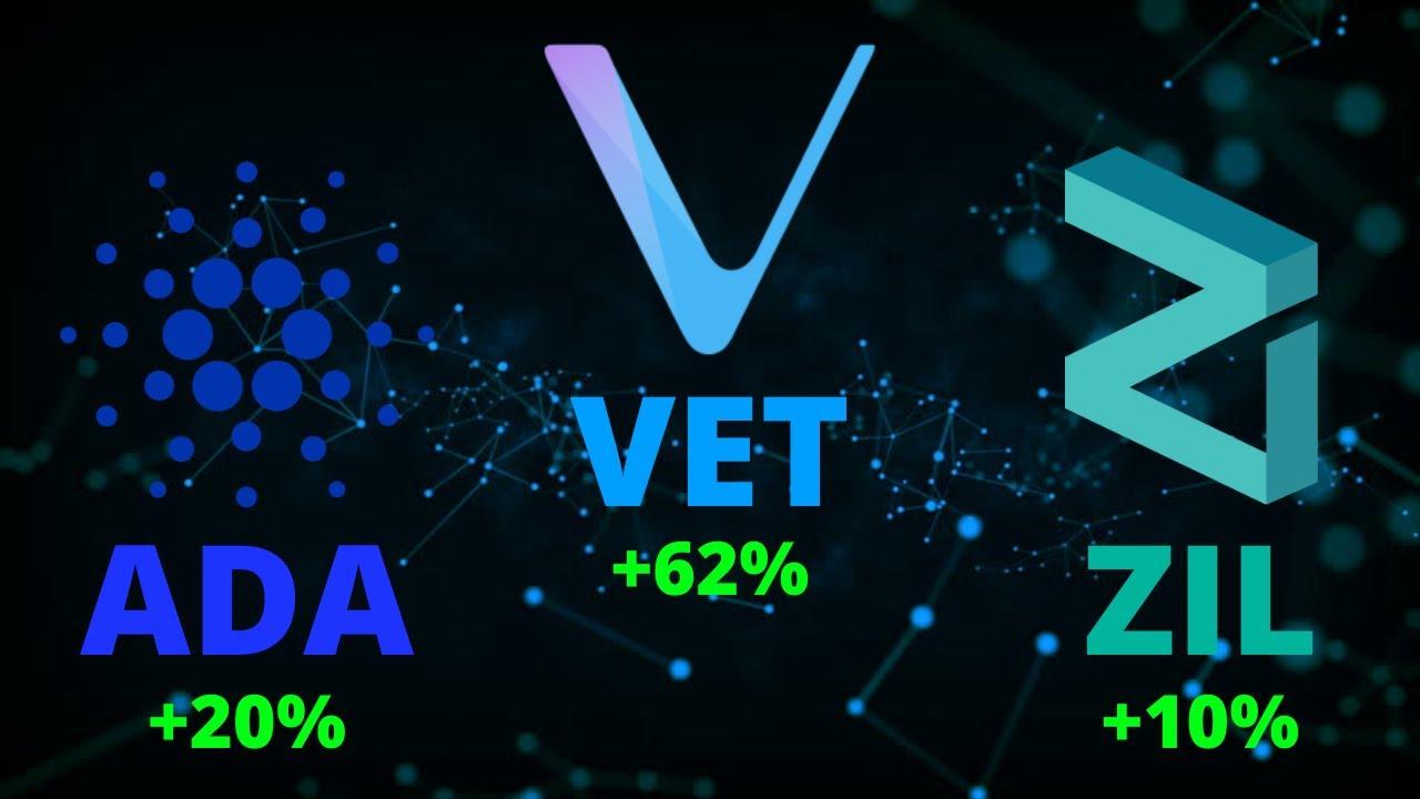 Cardano (ADA), VeChain (VET), Zilliqa (ZIL) + Important Crypto News!