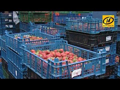 Цены на клубнику в Минске неоправданно «взлетели»