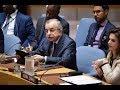 SRSG Tanin speech in UNSC on Kosovo 140518