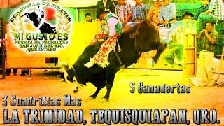 Jaripeo En La Trinidad, Tequisquiapan, Qro. 2015