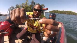 Strike King Bitsy Bug Jig - How I set it up and Catch fish!
