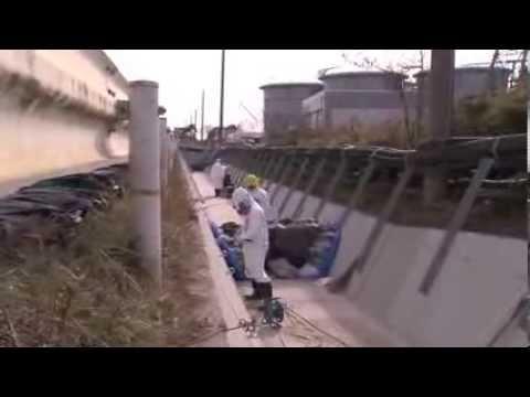 Working on the tank farm at Fukushima Daiichi