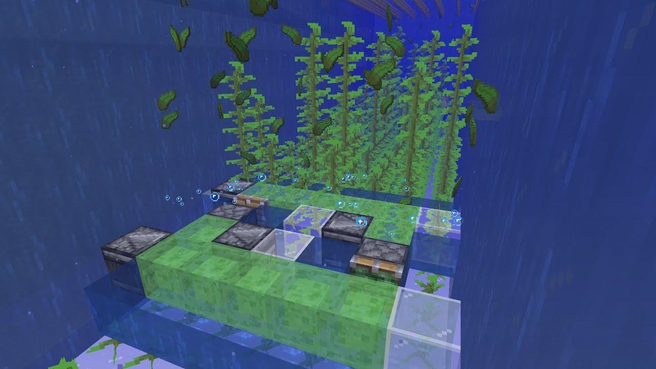 Tutorials Kelp Farming Official Minecraft Wiki