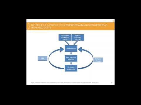 """""""Distributed Energy Resources and the Challenge to Utility Business Models"""