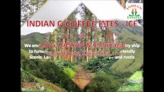 Coorg - Coffee estate ( Indian coffee estates )