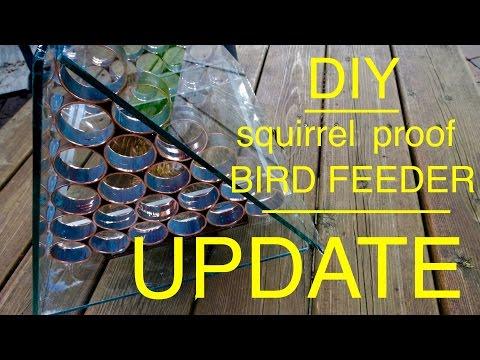 How to make a ● Squirrel Proof Bird Feeder  ●  U P D A T E