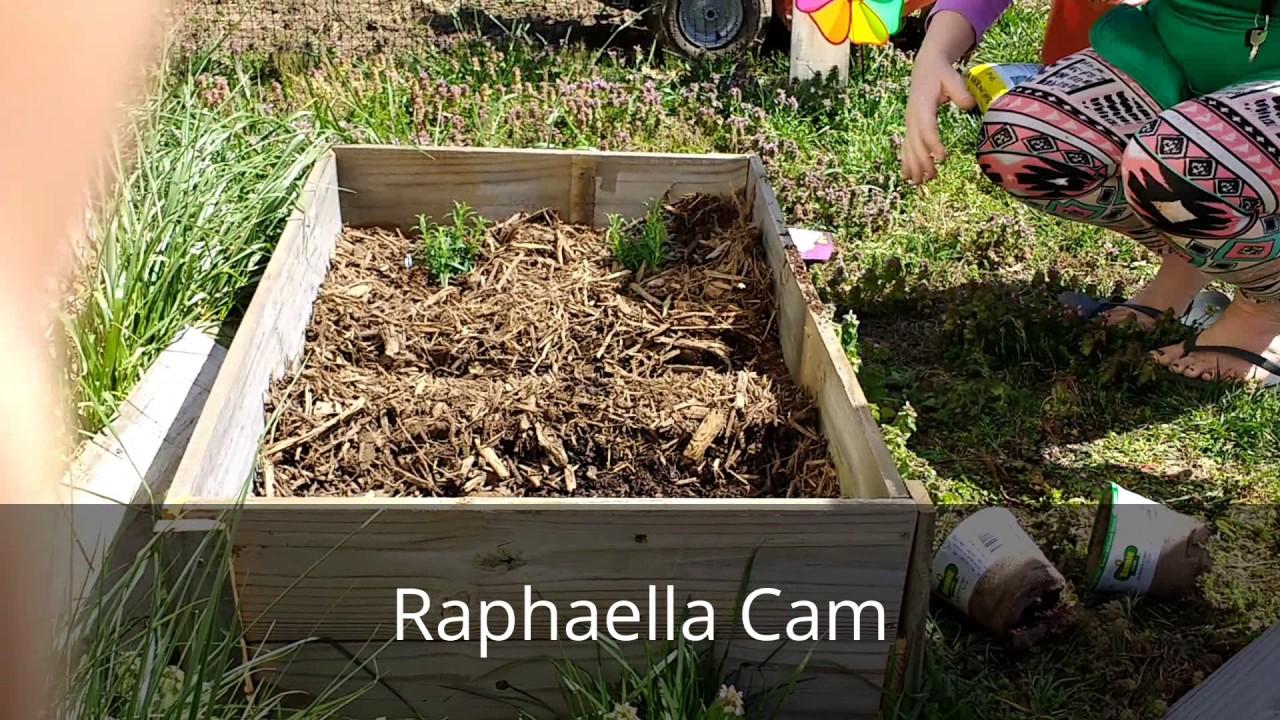 Planting The 2017 Garden Transitioning To Back To Eden Garden Method Youtube
