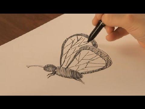 Cmo dibujar mariposas  Dibujos de la Naturaleza  YouTube