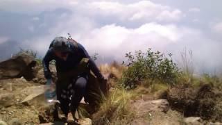 Volcán Tacaná / Proyecto Tacaná  (2016)