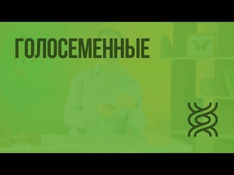Видеоурок: Биология — наука о живой природе по предмету