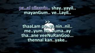 Kilukil Pambaram Malayalam Karaoke with synced lyrics