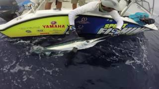 Big Game Fishing Azores