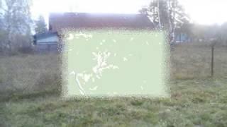 Алтай  Турочакский район  Продам дом, земельный уч  Дмитриевка 89130939401