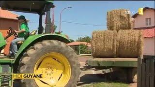 Mobilisation des agriculteurs à Macouria
