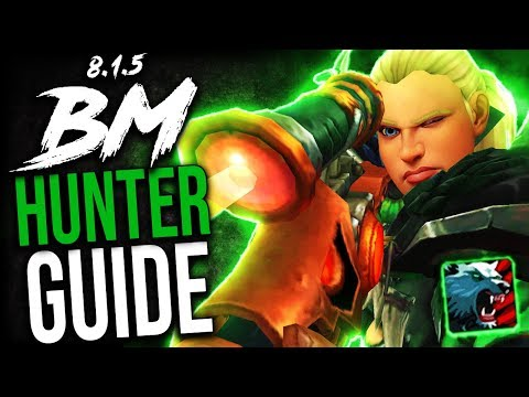 BM Hunter GUIDE For Mythic+ And WoW Raids (BFA Patch 8.1.5)