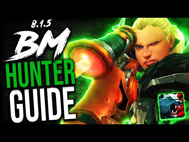 BM Hunter GUIDE for Mythic+ and WoW Raids (BFA Patch 8 1 5)