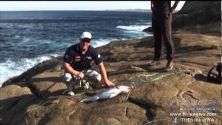 Fishing Western Australia Series 13 Episode 4 Preview - Sambo Rocks