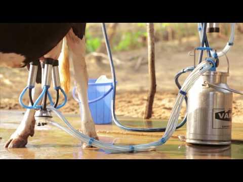 Adhikar dairy farm