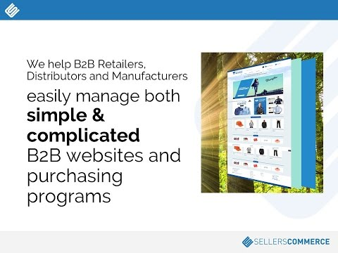 ABCs Of B2B Websites - Sell More by Managing Purchasing Programs Online