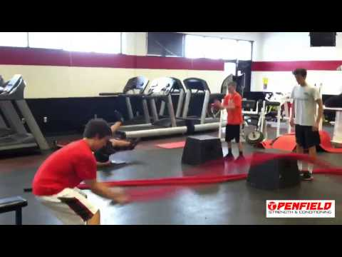 Penfield Performance Training