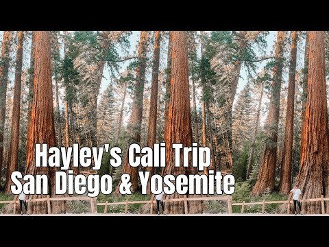 Hayley's Trip to California: San Diego and Road Trip to Yosemite