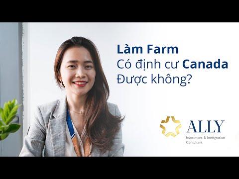 Làm farm có định cư Canada được hay không?