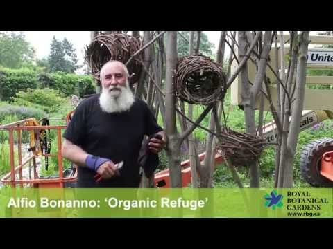 Earth Art Exhibition: 'Organic Refuge' by Alfio Bonanno