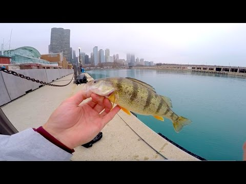 City Fishing in Downtown Chicago