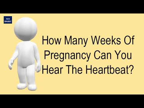 How Many Weeks Of Pregnancy Can You Hear The Heartbeat?