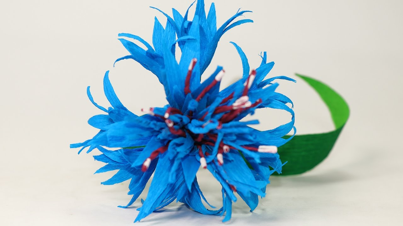 paper flowers step by step tutorial