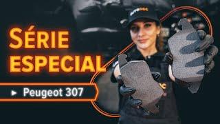 Reparar PEUGEOT 307 faça-você-mesmo - guia vídeo automóvel