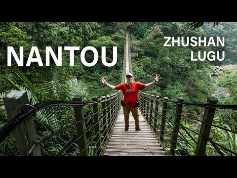 🌲🌄🌻Zhushan + Lugu in NANTOU -- Bamboo and Waterfalls (南投竹山鹿谷)