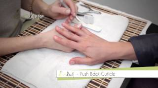 Perfect Manicure by Debbie Leavitt for Ludwika Paleta Thumbnail