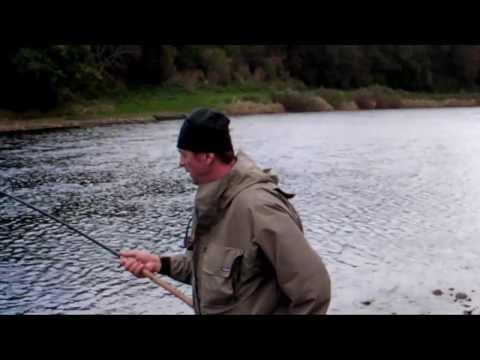 Tweed  Salmon