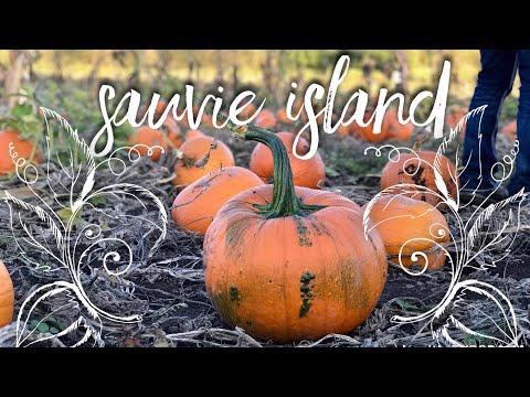 SAUVIE ISLAND | HAUNTED CORN MAZE & PUMPKIN PATCH!