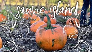 Sauvie Island | Haunted Corn Maze & Pumpkin Patch!