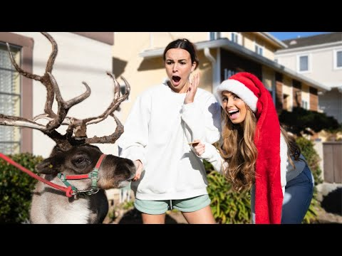 CHRISTMAS PRANKS ON BRENT & PIERSON
