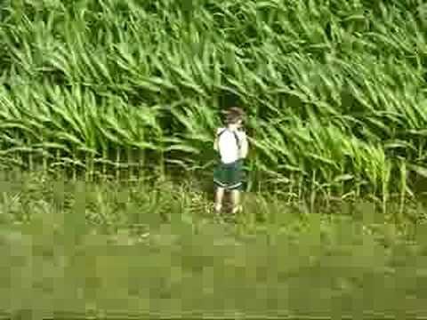 Stupid kids peeing in a cornfield
