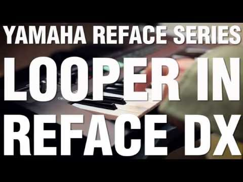 Looper In Reface DX