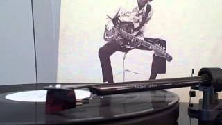 Hound Dog Taylor & The Houserockers - See Me In The Evening (Vinyl 1974)