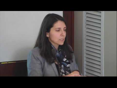 Macarena Sáez & Laurence Helfer | New Developments in LGBT Rights within the Inter-American System