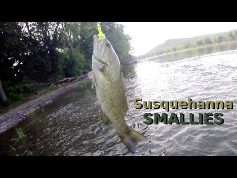Pennsylvania PA Fishing - SMALLMOUTH BASS FISHING - Lackawanna To The Susquehanna River Smallies