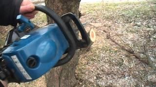 Как спилить дерево(Как быстро спилить дерево и чтоб оно упало в нужном направлении., 2016-01-09T14:39:39.000Z)